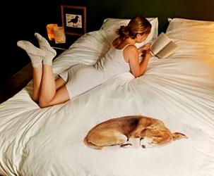 Bettwasche mit Hund